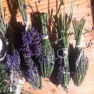 Alternativ lavendelpose – DIY